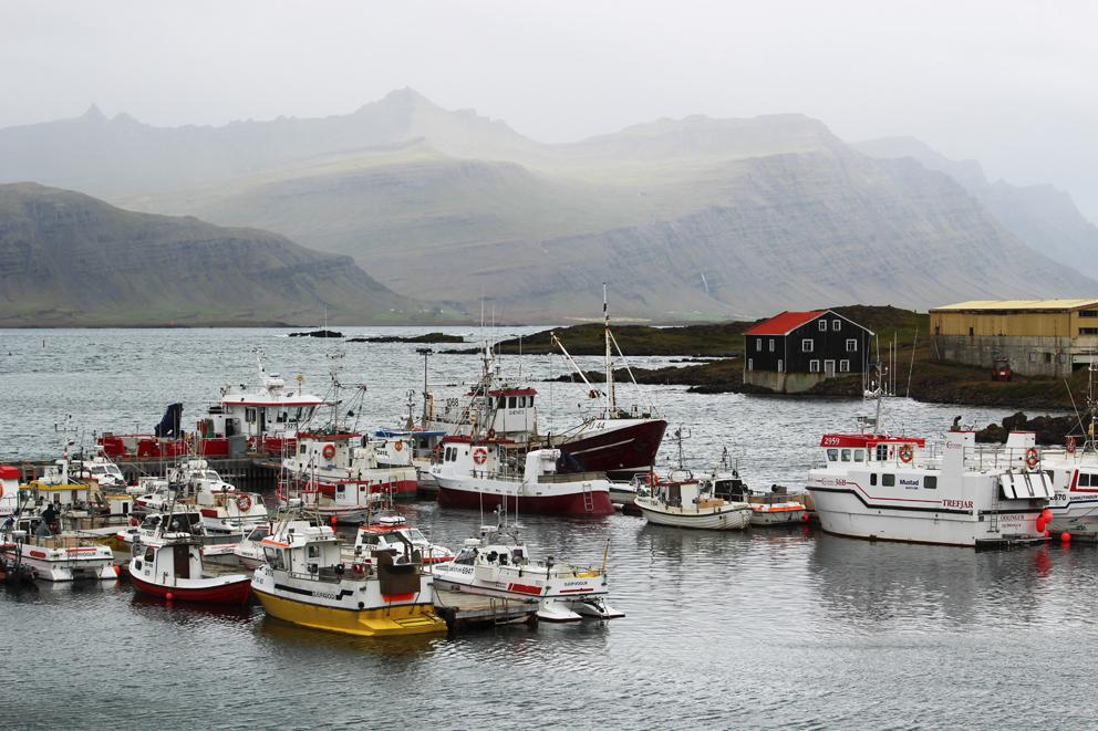 i viaggi della patta-Islanda-fiordi 2