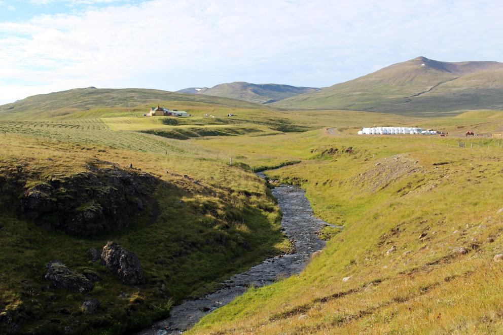 i viaggi della patta-Islanda-paesaggio