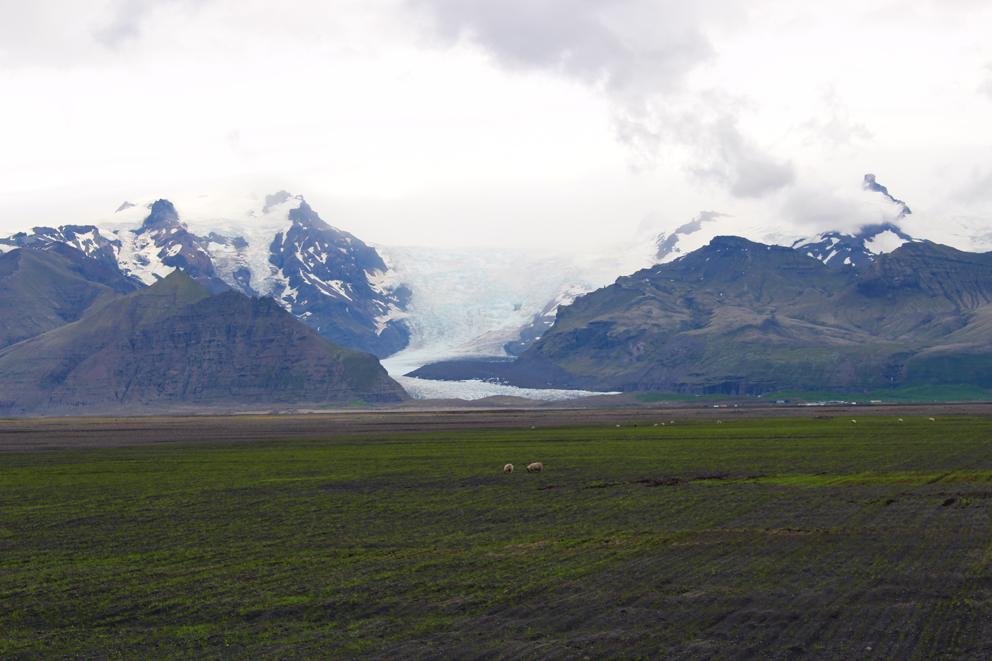 i viaggi della patta-Islanda-Skaftafell