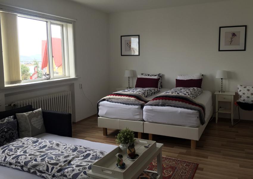 i viaggi della patta-Islanda-Skólavörðustígur Apartment