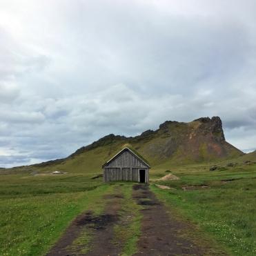 i viaggi della patta-Islanda-viking